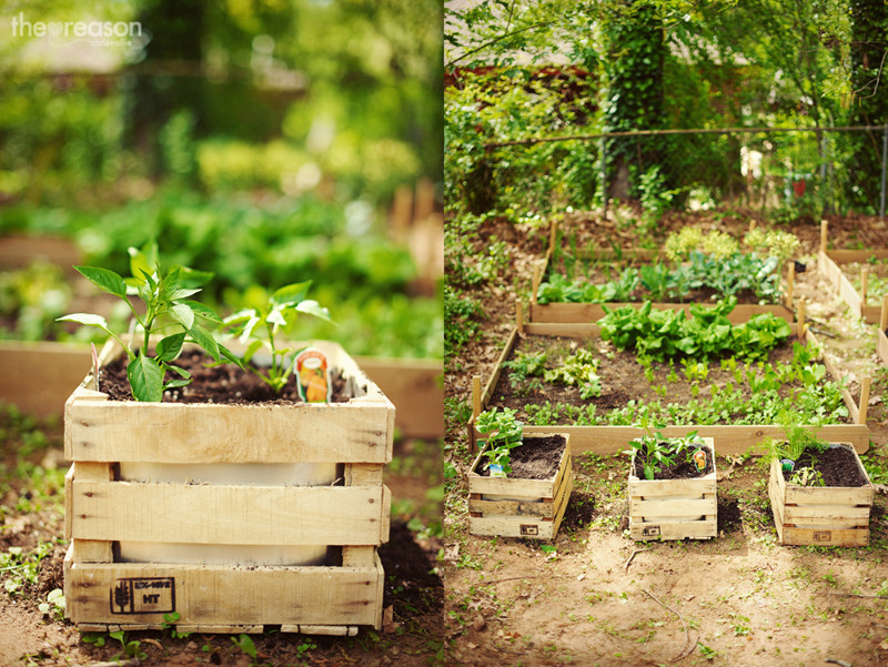 Best ideas about Diy Garden Ideas . Save or Pin 40 Creative DIY Gardening Ideas With Recycled Items Now.