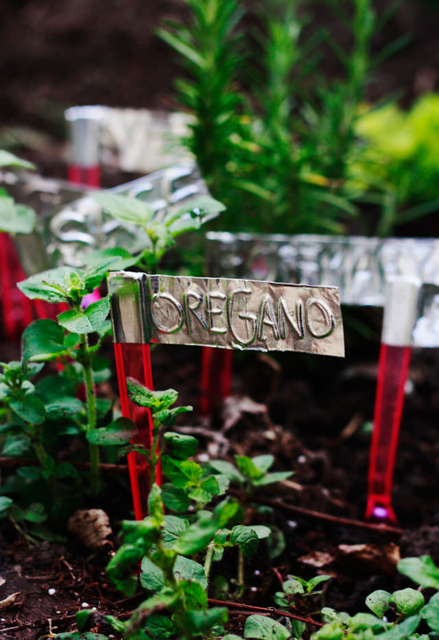 DIY Garden Markers  DIY Plant Markers