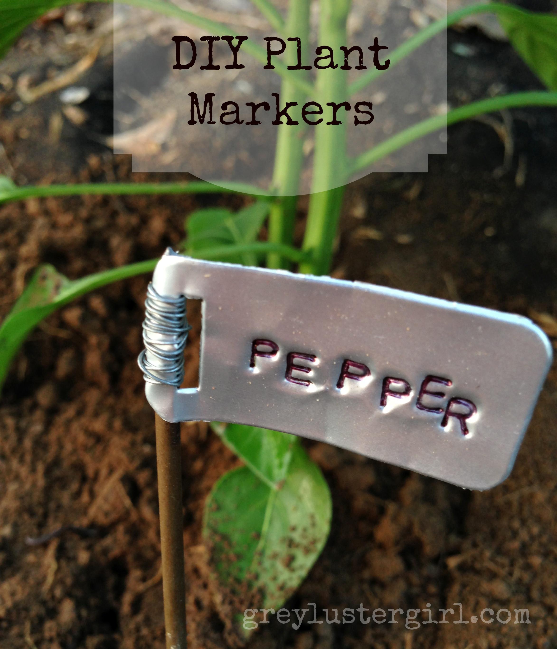 DIY Garden Markers  DIY Garden Plant Markers