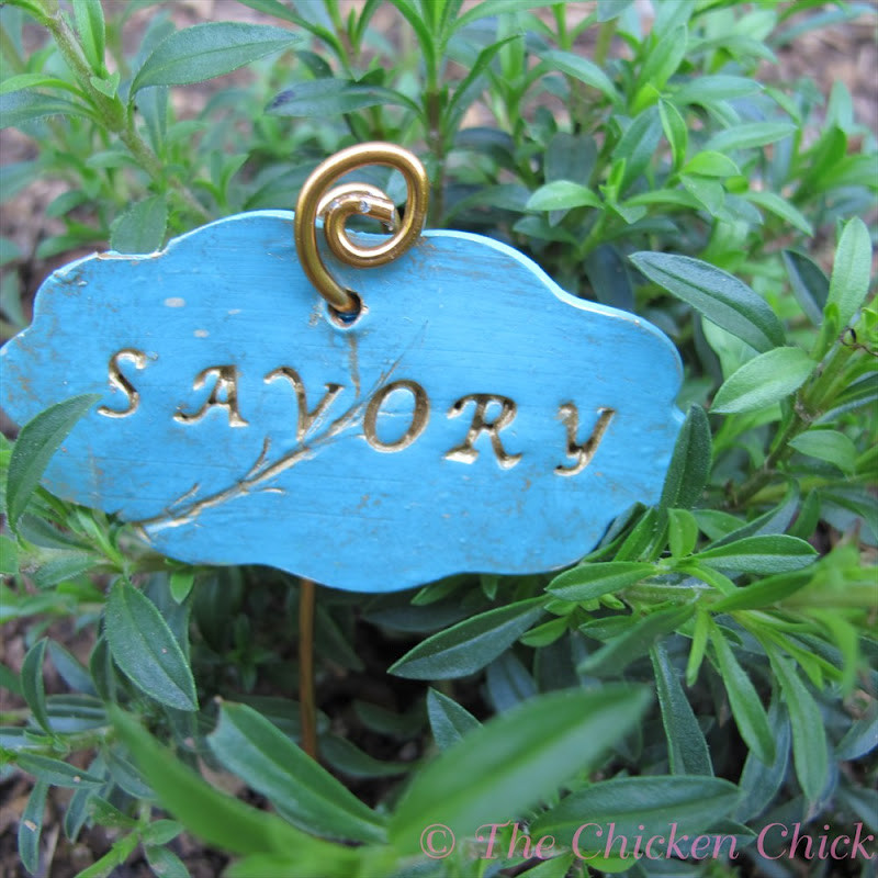 DIY Garden Markers  DIY Garden Markers using Polymer Clay