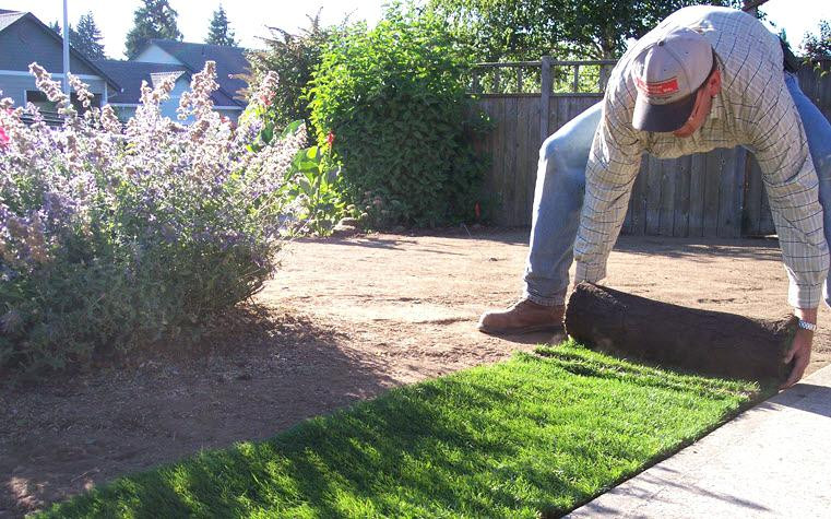 Best ideas about DIY Hydroseeding Kit . Save or Pin Hydroseeding Do It Yourself Do It Yourself Do Yourself A Now.
