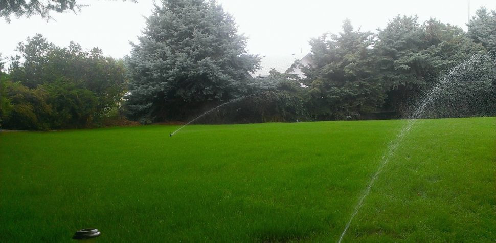 Best ideas about DIY Hydroseeding Kit . Save or Pin What You Should Wear To Diy Hydroseed Now.