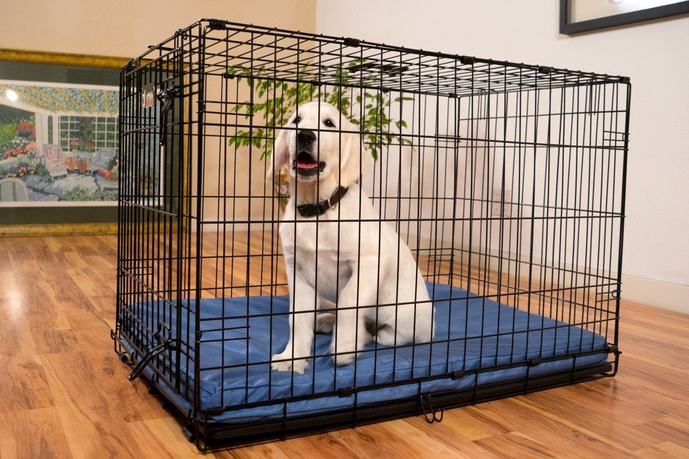 DIY Indestructible Dog Crate  Pads For Dog Crates Indestructible Happy Dog Heaven