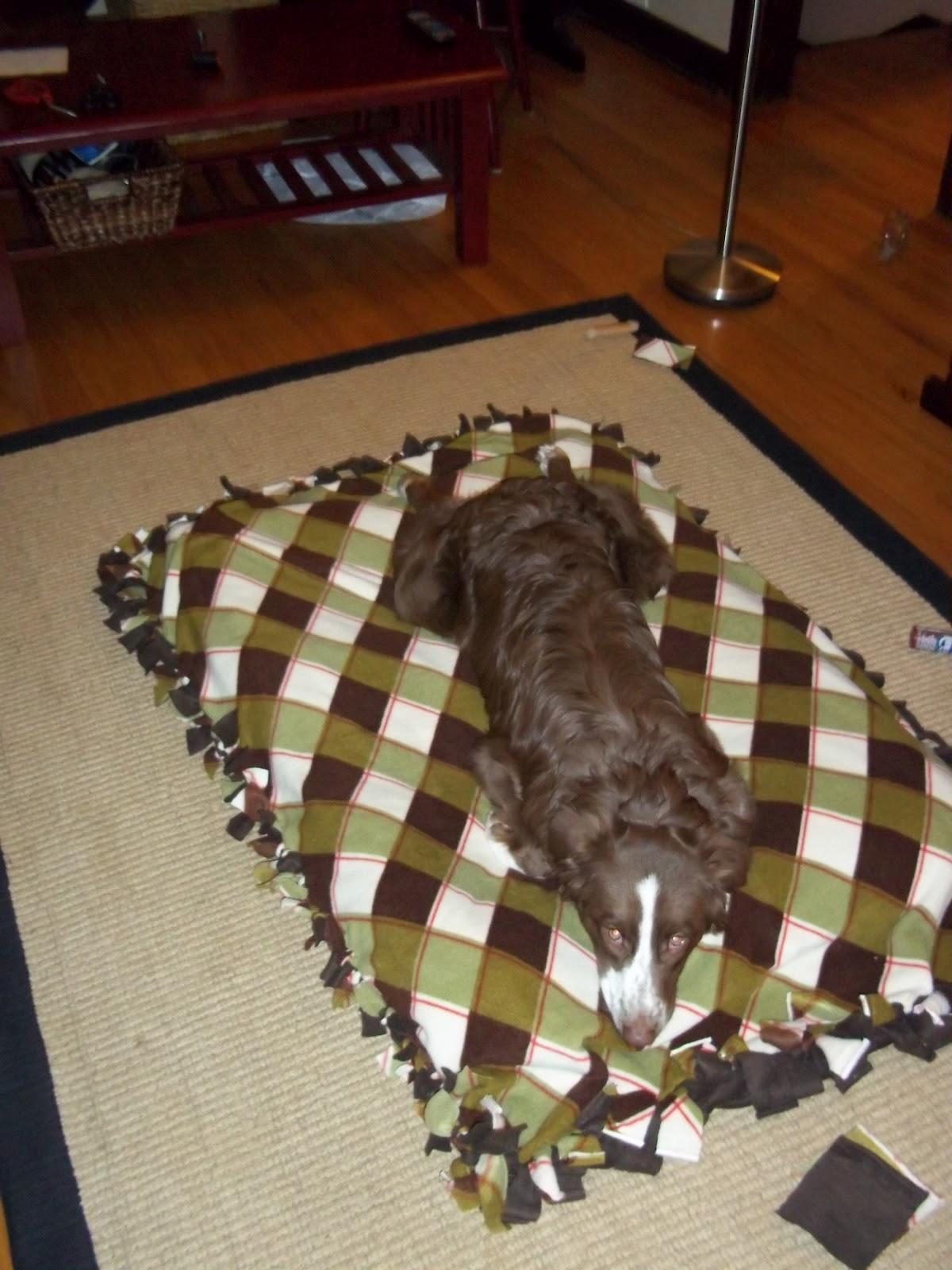 DIY Large Dog Beds  Our Big Blue House Homemade Dog Bed