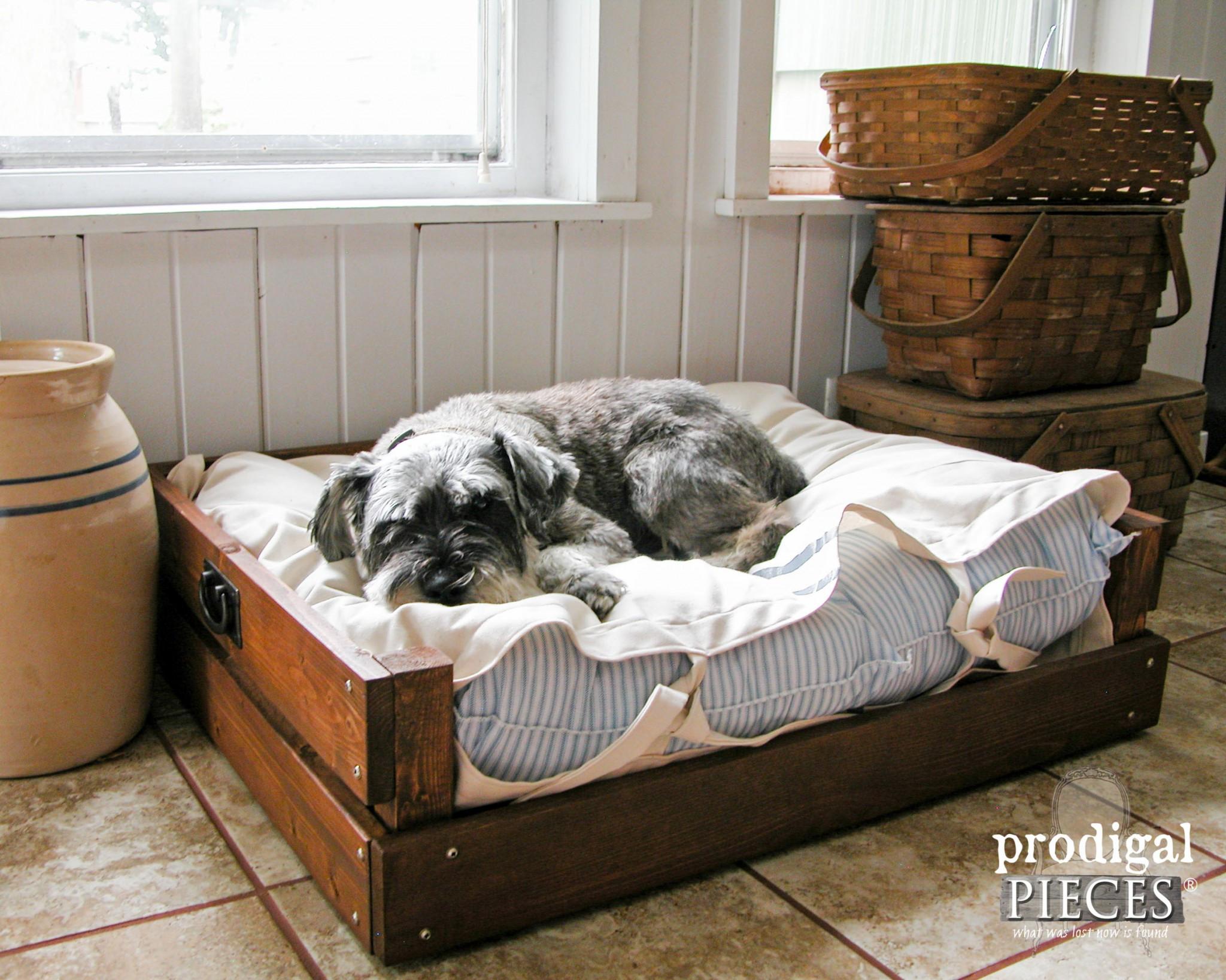 DIY Large Dog Beds  Pet Bed DIY Building Plans & Tutorial Prodigal Pieces