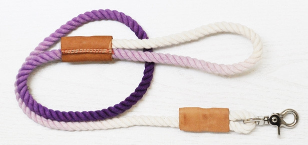 DIY Rope Dog Leash  DIY Craft Dip Dyed Ombre Leash