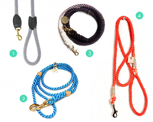 DIY Rope Dog Leash  How To Make a Modern Dip Dyed Rope Dog Leash Curbly