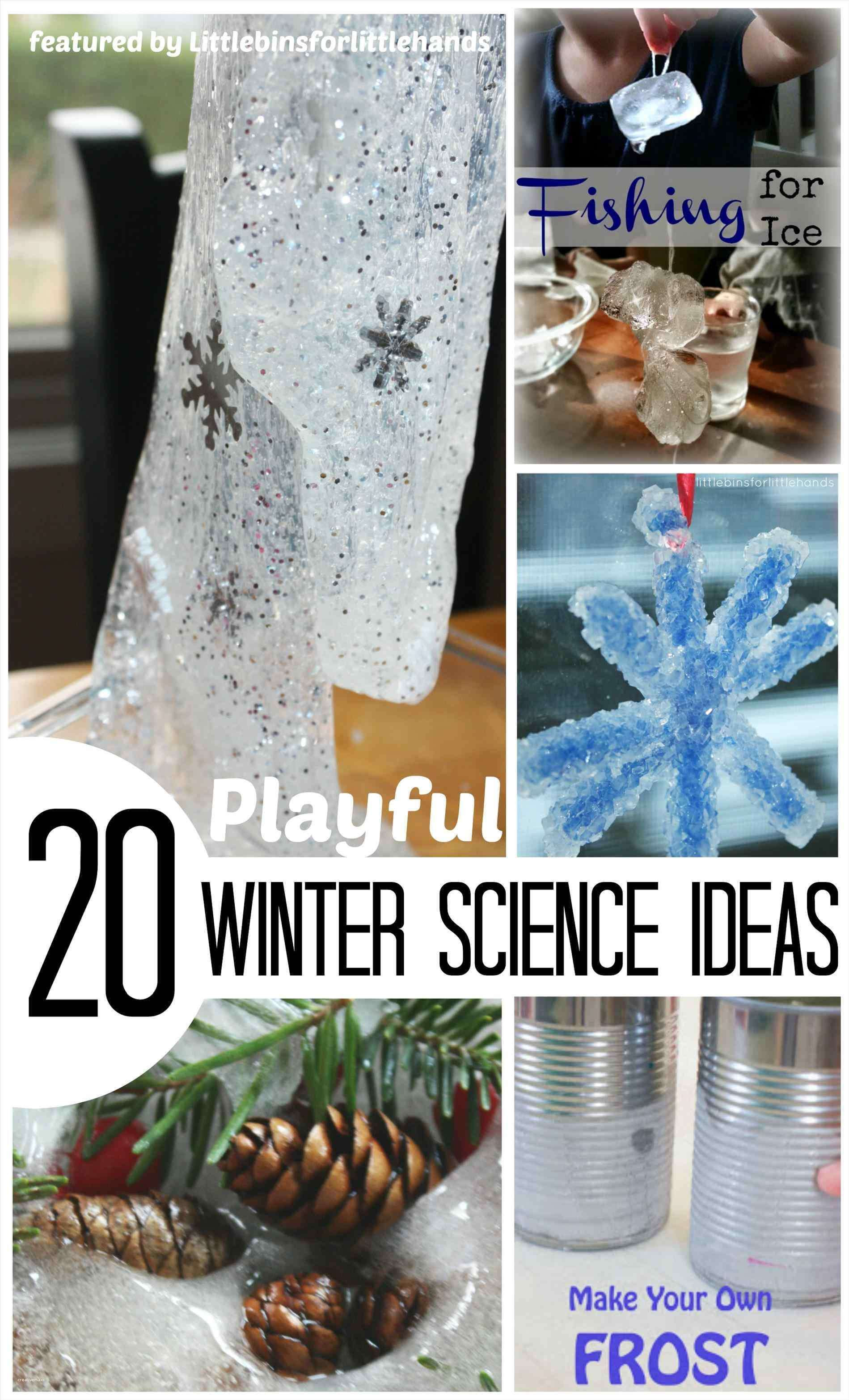 Best ideas about DIY Science Projects For Adults . Save or Pin Unique Easy Winter Crafts for Adults Creative Maxx Ideas Now.