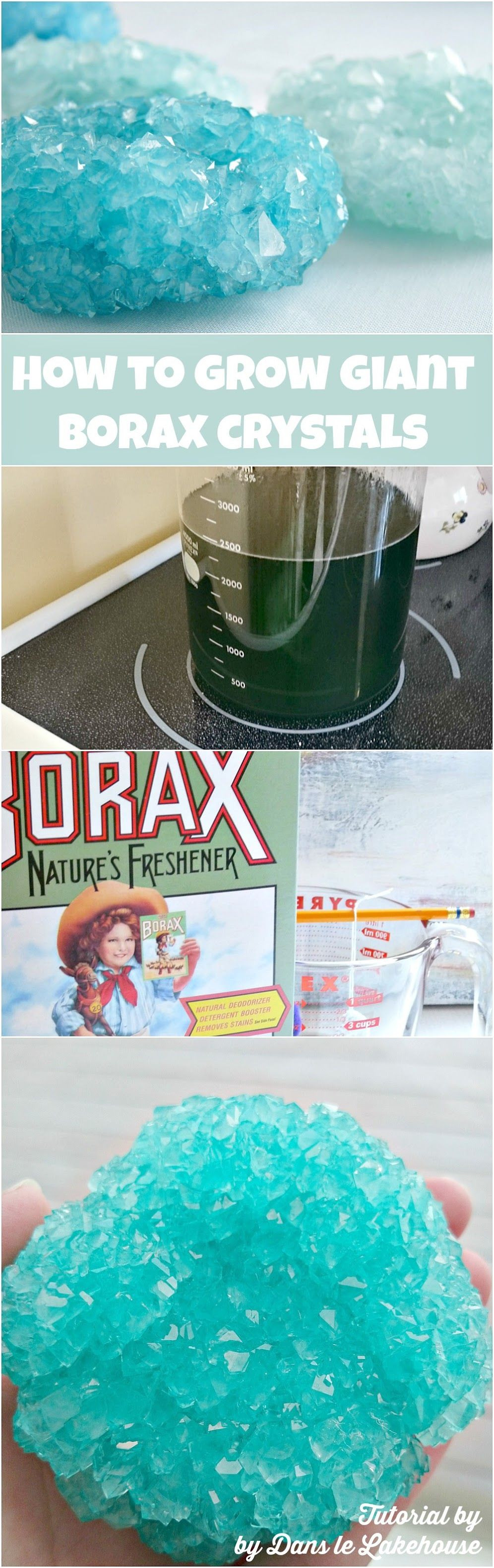 Best ideas about DIY Science Projects For Adults . Save or Pin Borax Crystals How to Grow Giant DIY Borax Crystals Now.