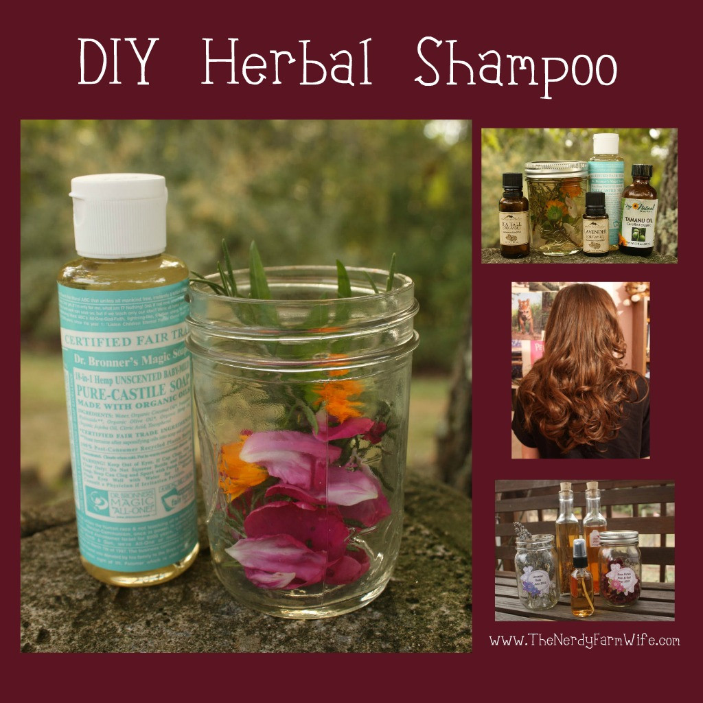 Best ideas about DIY Shampoo For Oily Hair . Save or Pin Homemade Herbal Shampoo Now.