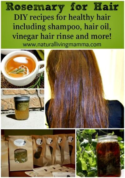 Best ideas about DIY Shampoo For Oily Hair . Save or Pin Rosemary Recipes for Hair Care – Hair Oil Shampoo and Now.