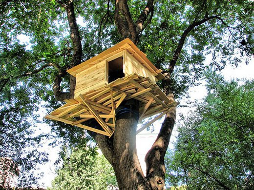 Best ideas about DIY Treehouse Kits . Save or Pin Download Treehouse Kits For Kids Plans DIY china birch Now.
