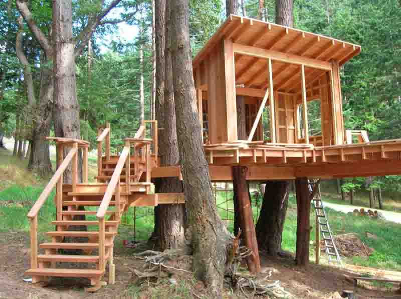 Best ideas about DIY Treehouse Kits . Save or Pin How to Build a Treehouse in the Backyard Now.