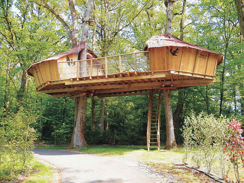 Best ideas about DIY Treehouse Kits . Save or Pin Treehouse Plans Designs Diy Adult Tree Houses House Now.
