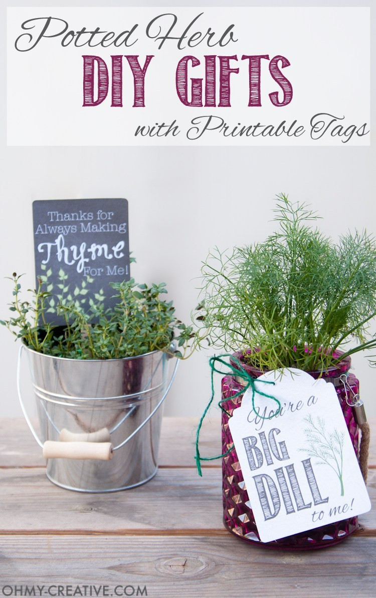 Best ideas about DIY Valentine'S Gifts . Save or Pin Potted Herb DIY Gifts with Printable Tags Oh My Creative Now.
