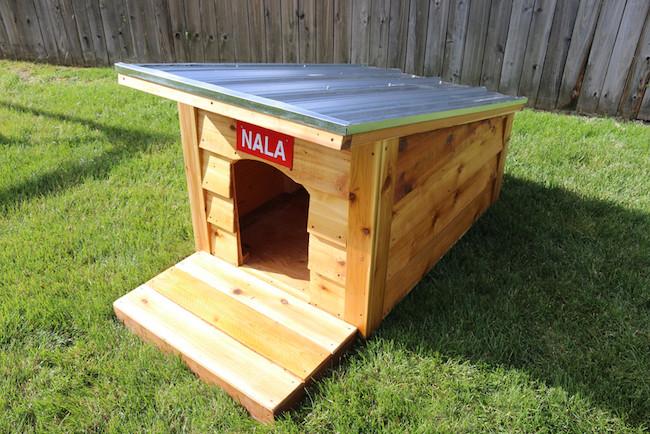 Dog House DIY  How to Build a Doghouse
