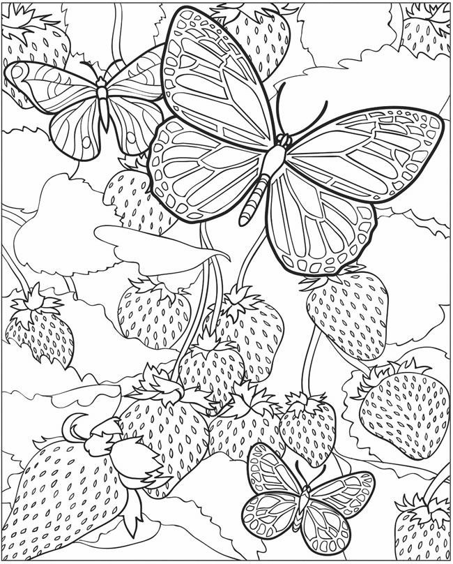 Dover Free Coloring Pages  Dover publications free coloring pages