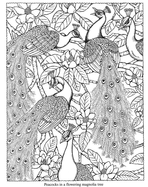 Dover Free Coloring Pages  Dover Coloring Pages Bestofcoloring