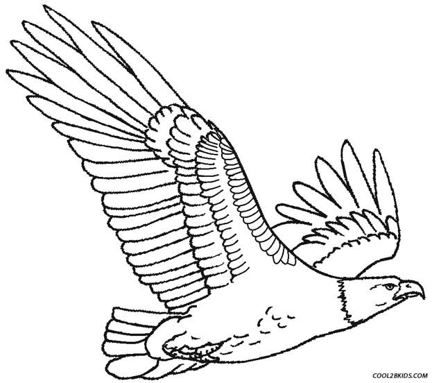 Eagle Coloring Pages  Printable Eagle Coloring Pages For Kids
