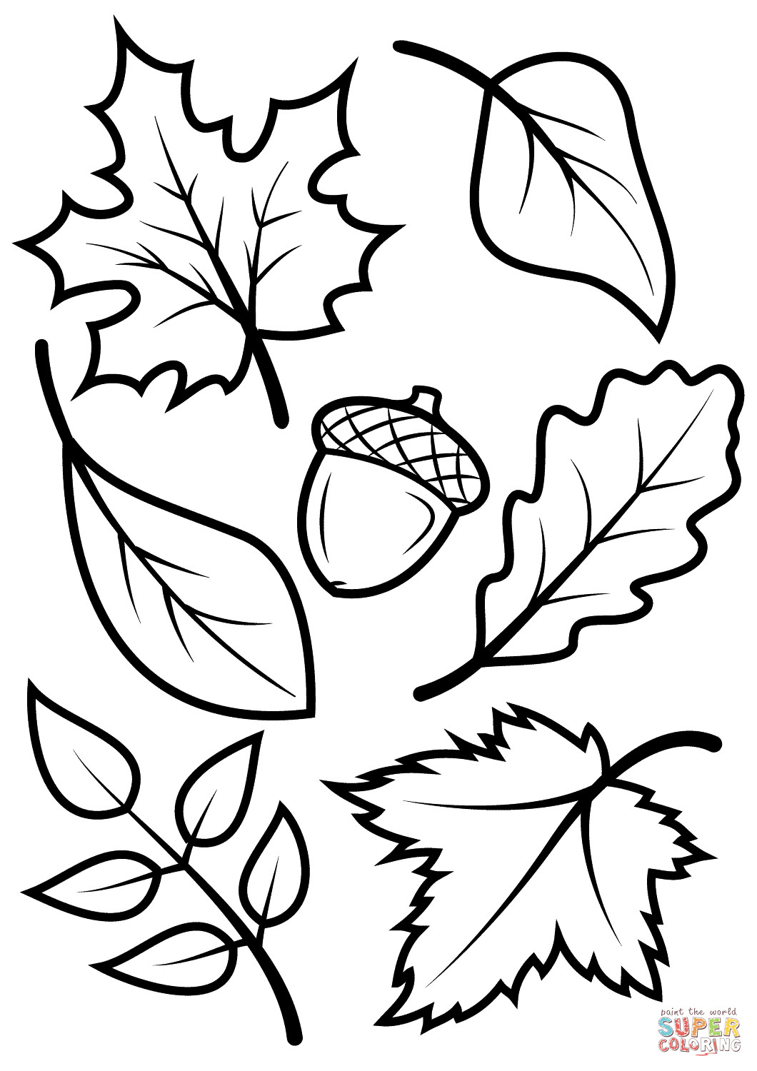 Fall Leaves Coloring Sheet  Fall Leaves and Acorn coloring page