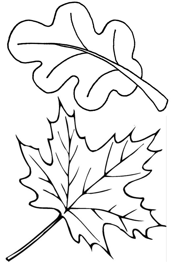 Fall Leaves Coloring Sheet  Free Printable Leaf Coloring Pages For Kids