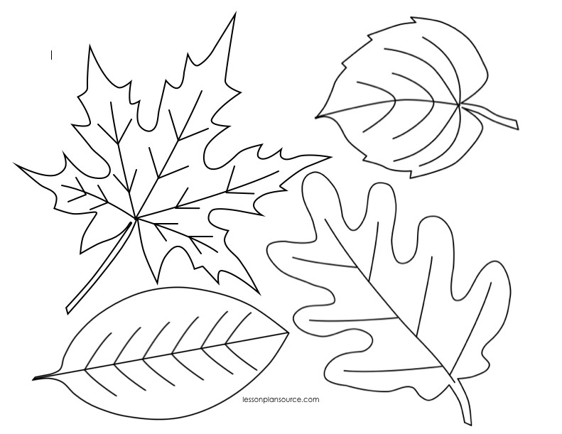 Fall Leaves Coloring Sheet  Autumn Leaves Coloring Page Bestofcoloring