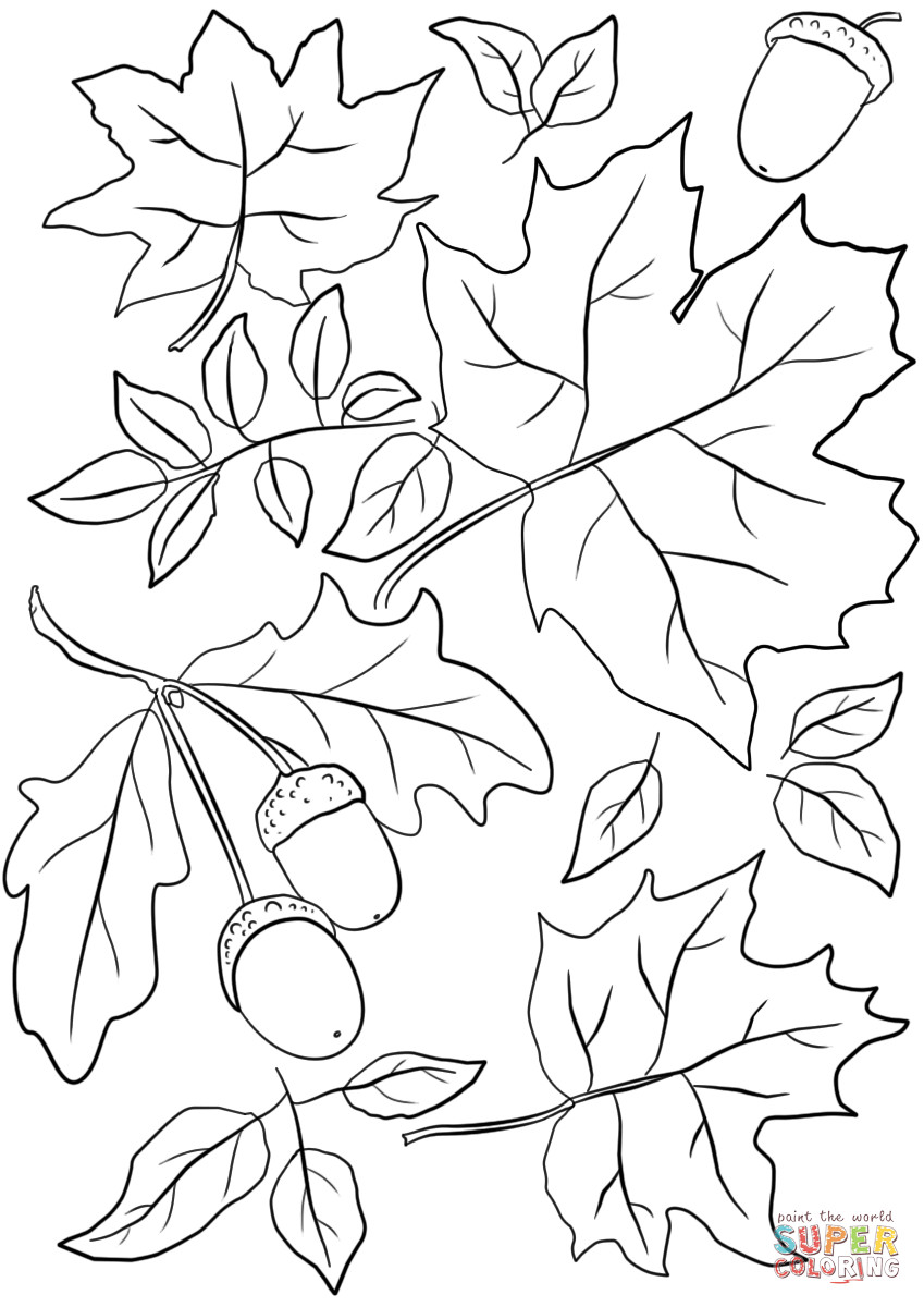 Fall Leaves Coloring Sheet  I Love Summer coloring page