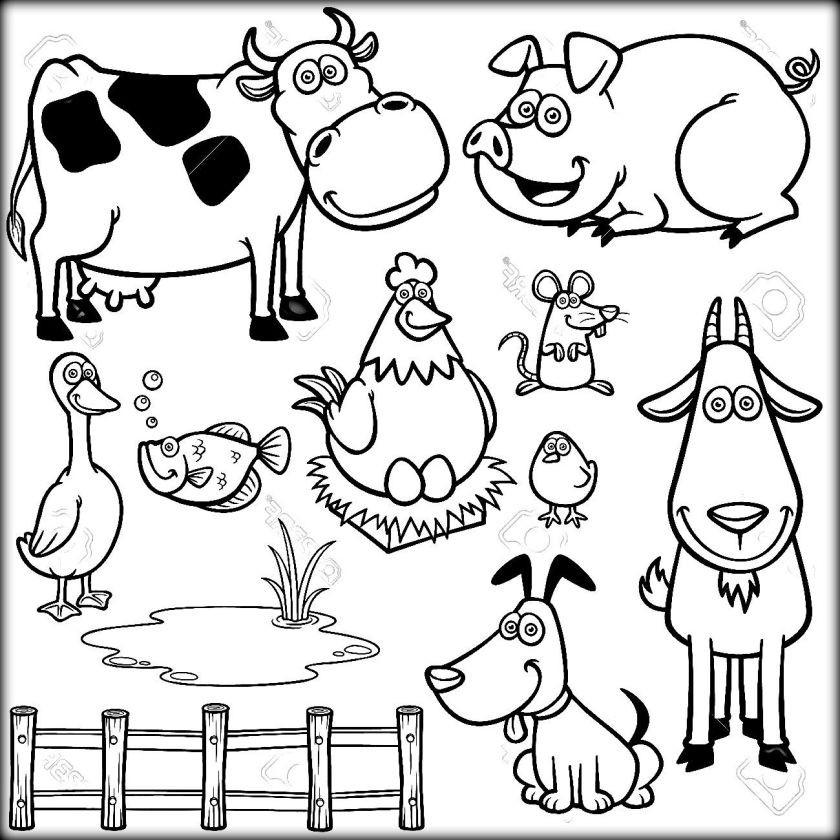 Farm Coloring Sheet  Farm Animals Coloring Sheets Color Zini