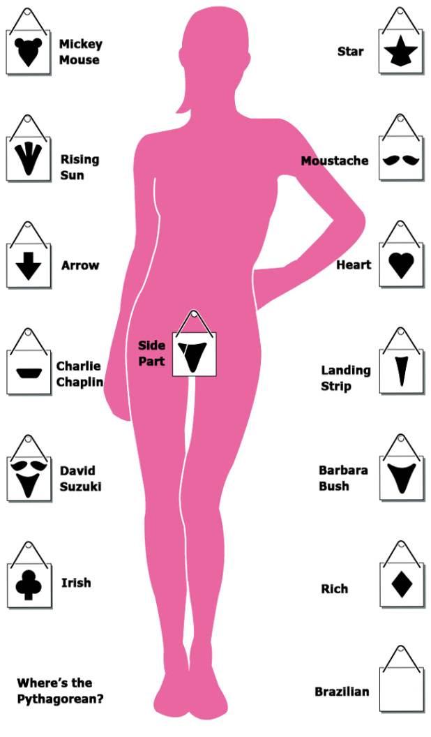 Female Pubic Hairstyles  Female Grooming Styles