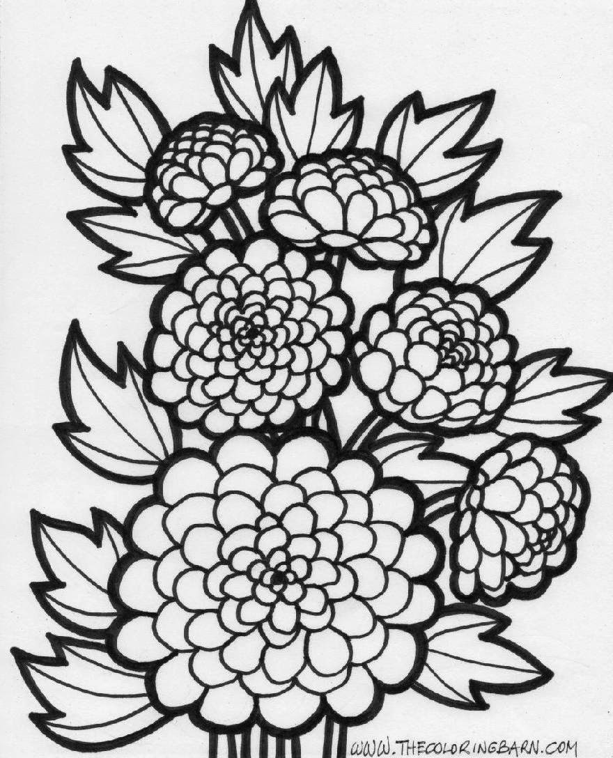 Flowers Coloring Sheet  Flower Coloring Sheets