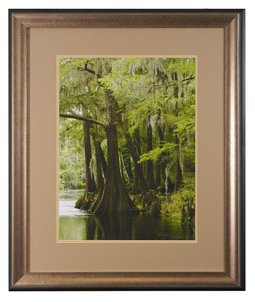 Best ideas about Framed Wall Art . Save or Pin Framed Wall Art Tropical Landscape Big Cypress Swamp Now.