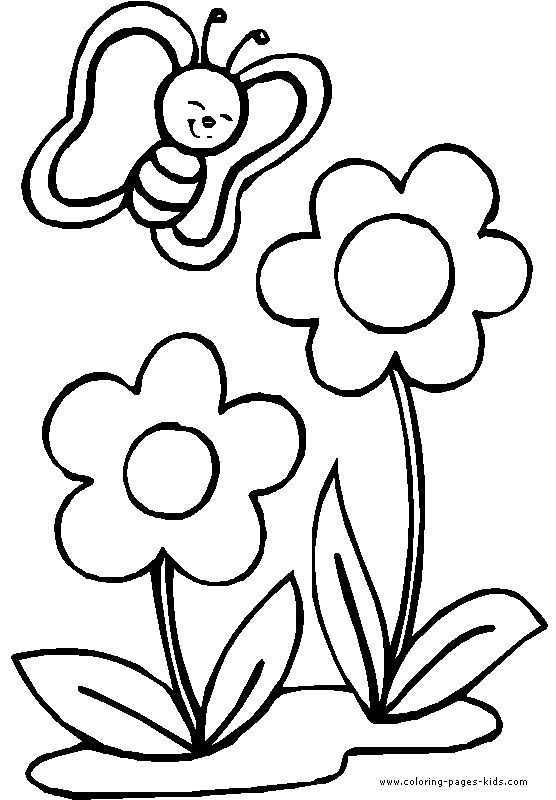 Free Carnation Printable Coloring Sheets  free printable coloring pages flowers and butterflies