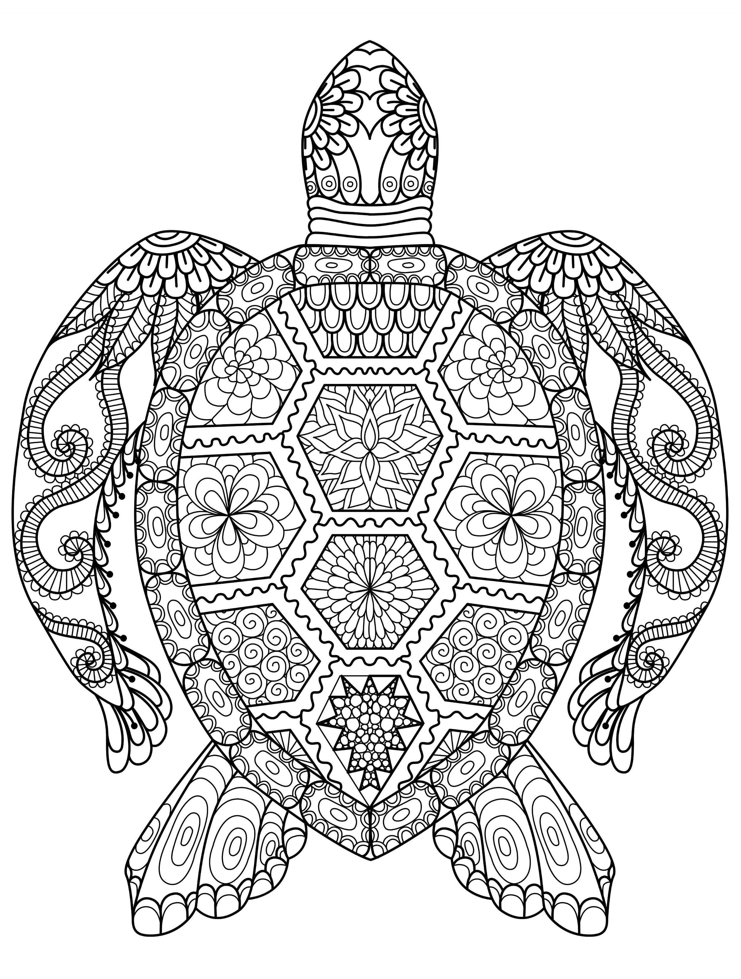 Free Coloring Pages Adult  Animal Coloring Pages for Adults Best Coloring Pages For