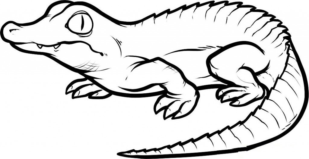 Free Coloring Pages Of Alligators  Free Printable Crocodile Coloring Pages For Kids