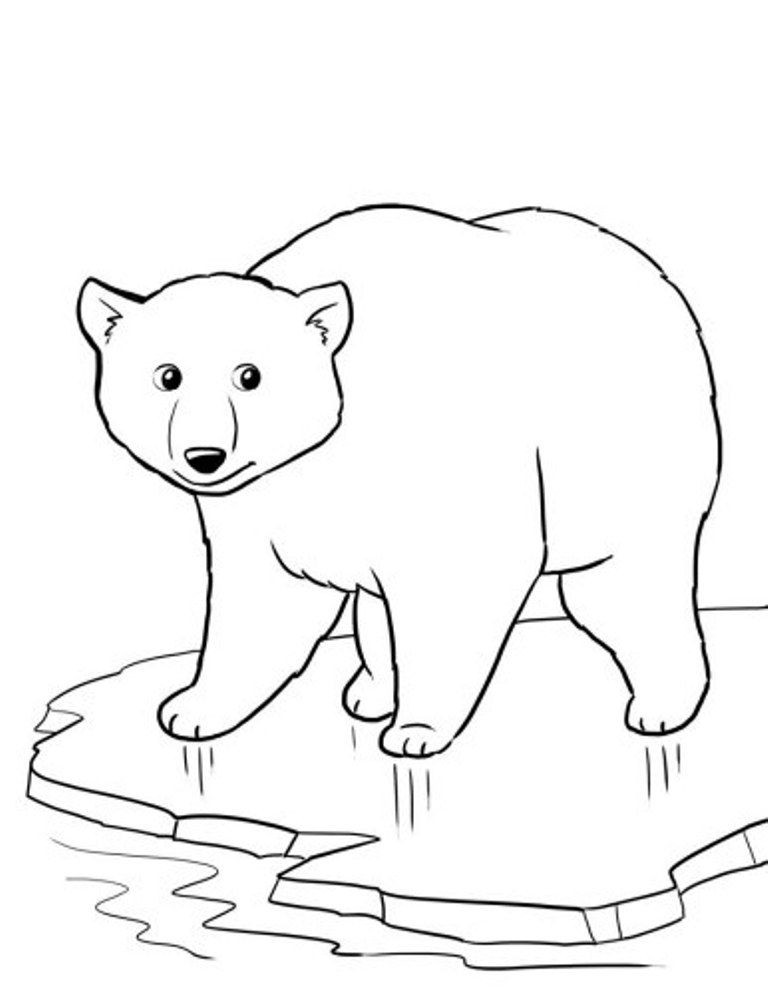 Free Coloring Pages Of Polar Bears  Polar Bear Color Page Coloring Home