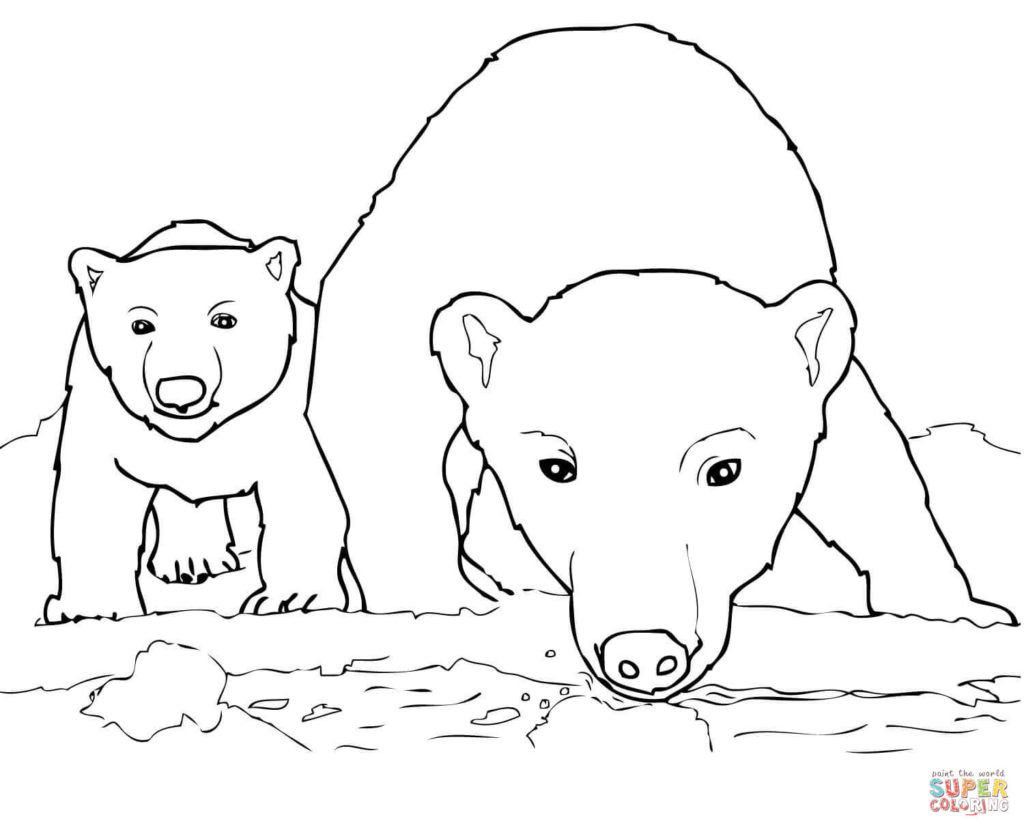 Free Coloring Pages Of Polar Bears  Christmas Polar Bear Free Colouring Pages