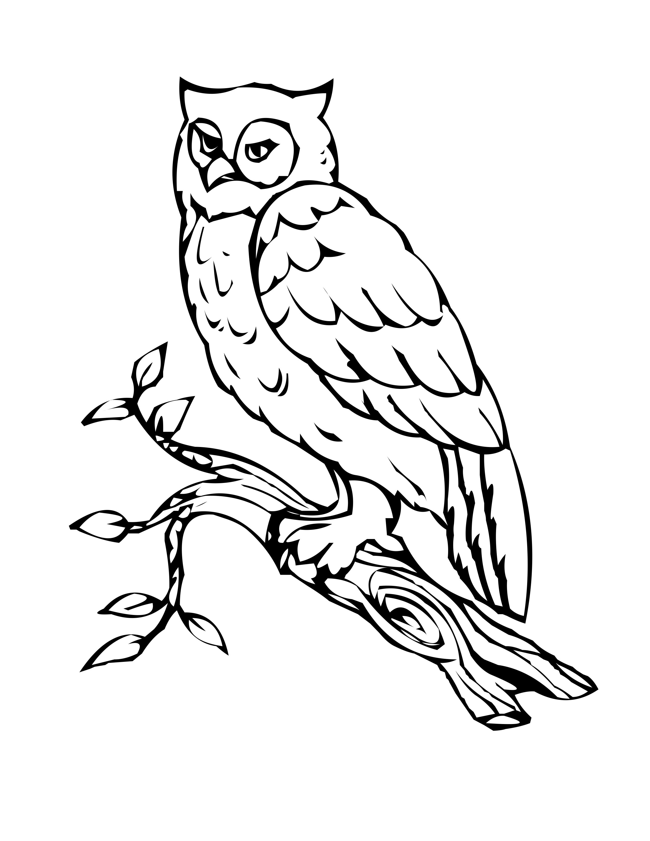 Best ideas about Free Coloring Pages Owls . Save or Pin Free Printable Owl Coloring Pages For Kids Now.