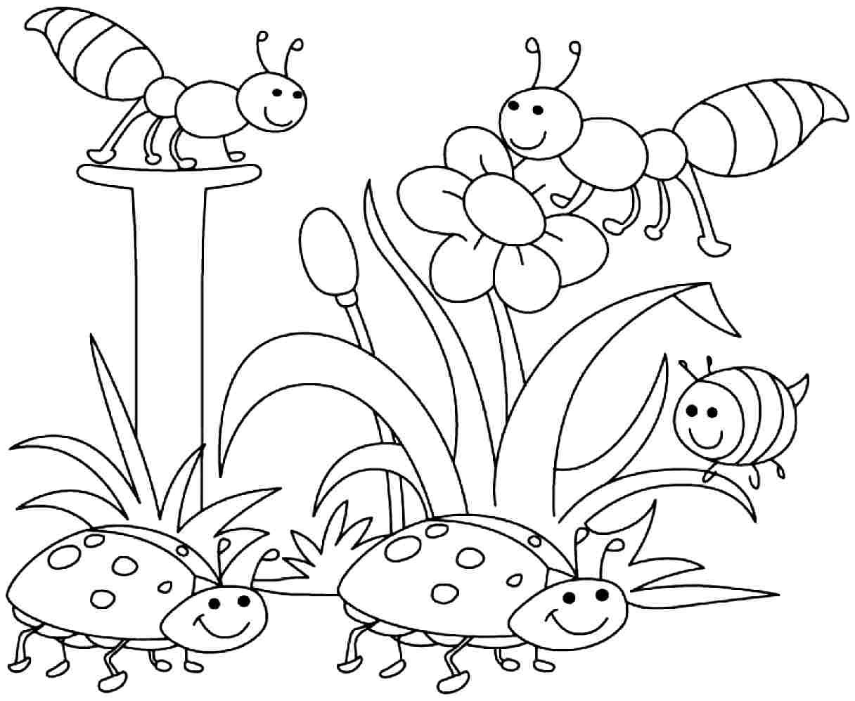Free Coloring Pages Spring Time  spring coloring pages for boys