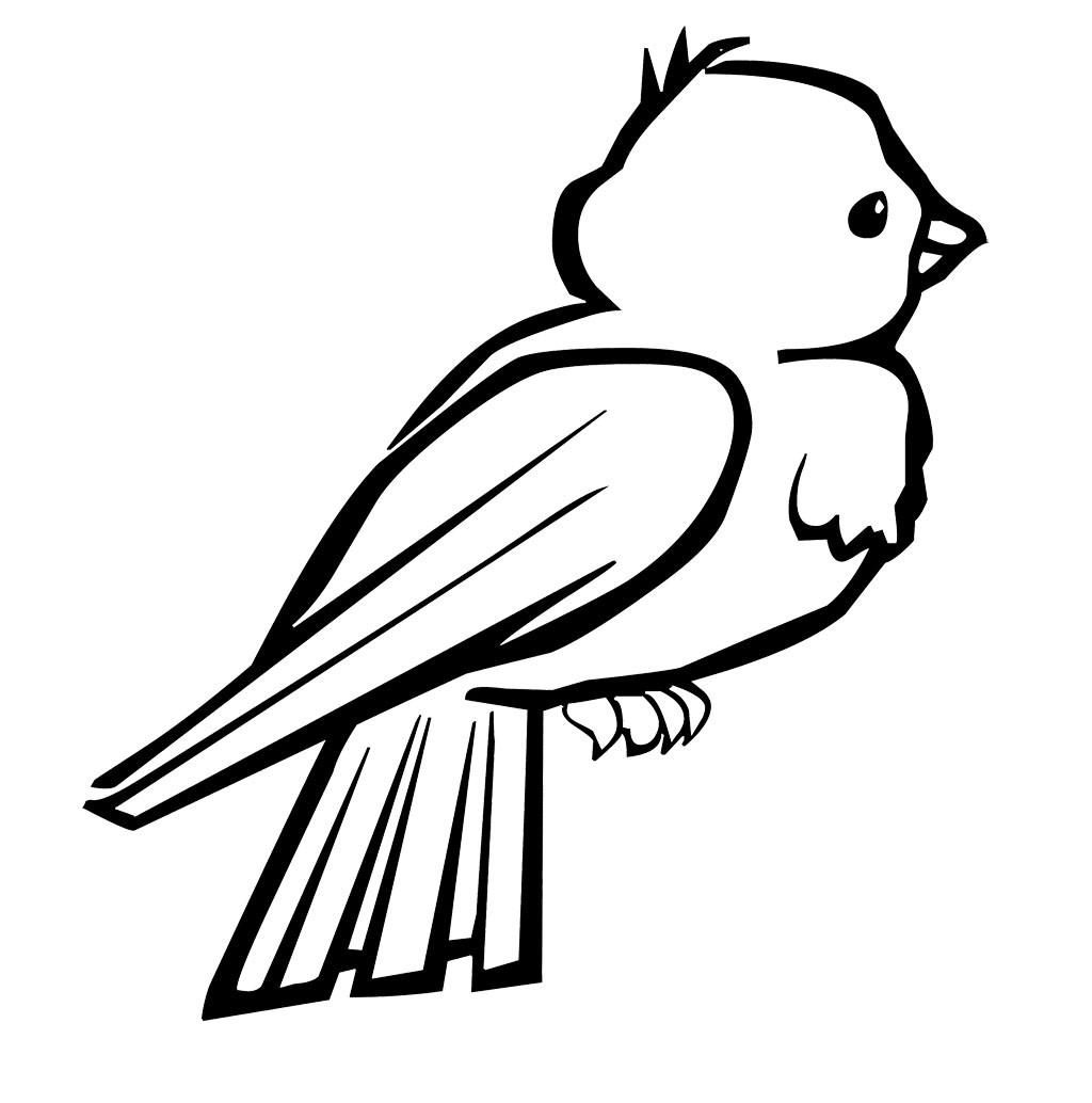 Free Coloring Sheets Of Birds  bird 6