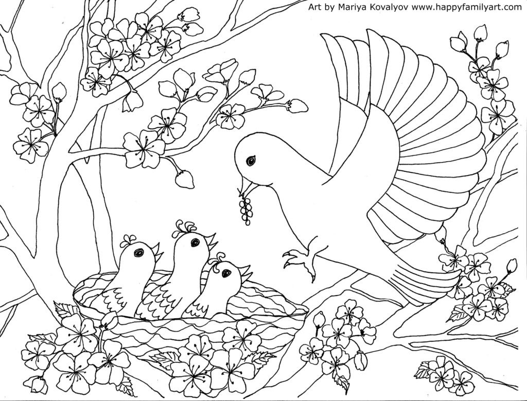 Free Coloring Sheets Of Birds  Birds Coloring Page