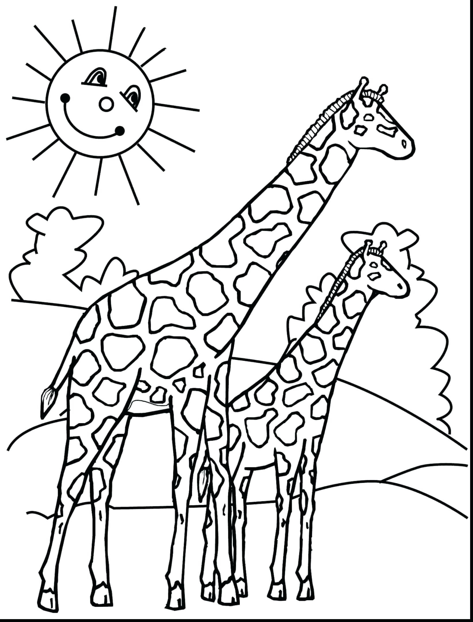 Free Coloring Sheets To Print  Baby Giraffe Coloring Pages Free