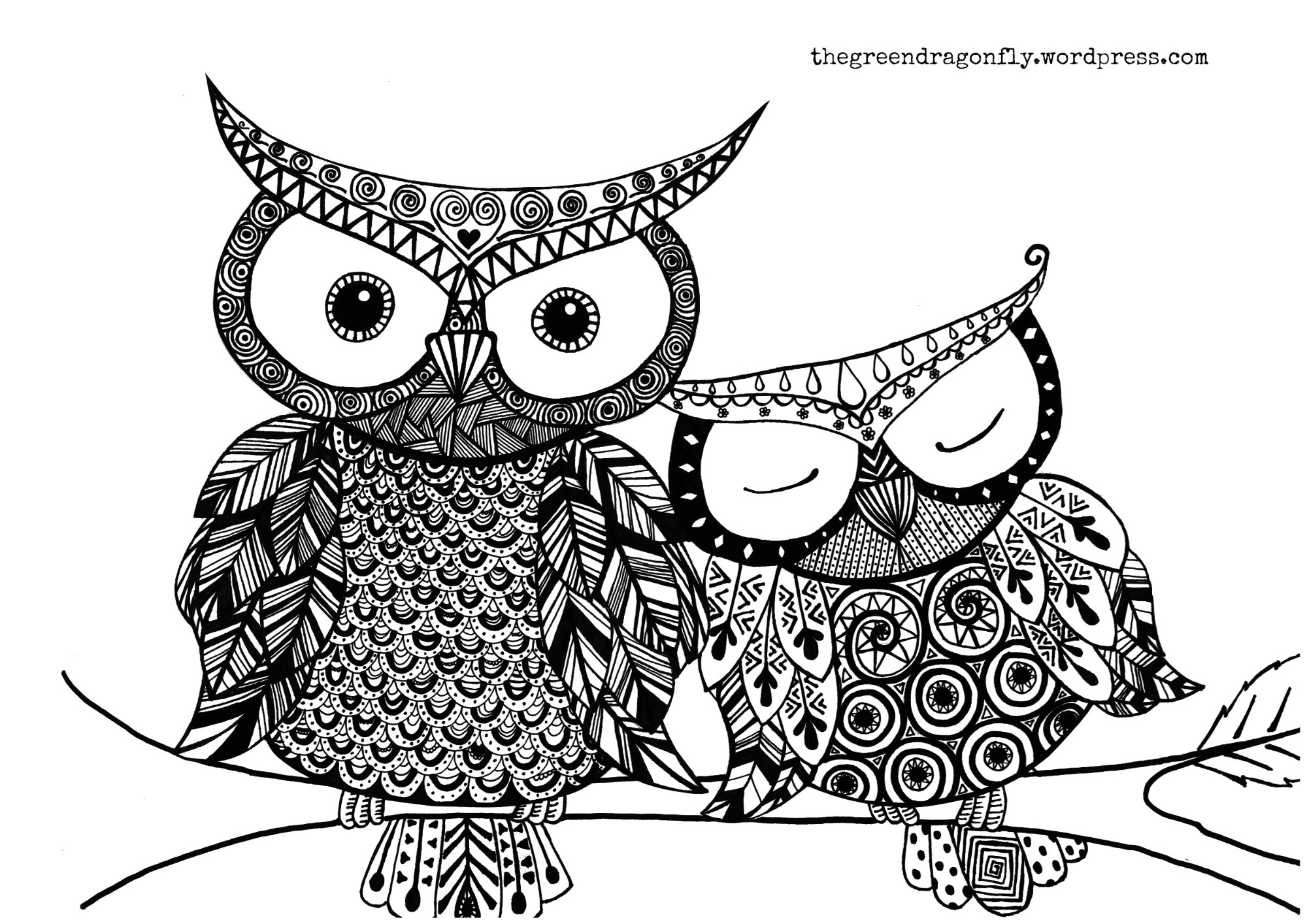 Free Owl Coloring Pages  Decorative Owl Adult Anti Stress Coloring Page Black And
