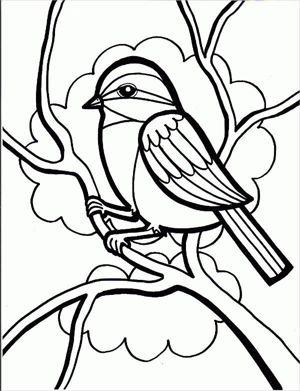 Free Printable Bird Coloring Pages  8 Bird Coloring Pages JPG AI Illustrator Download