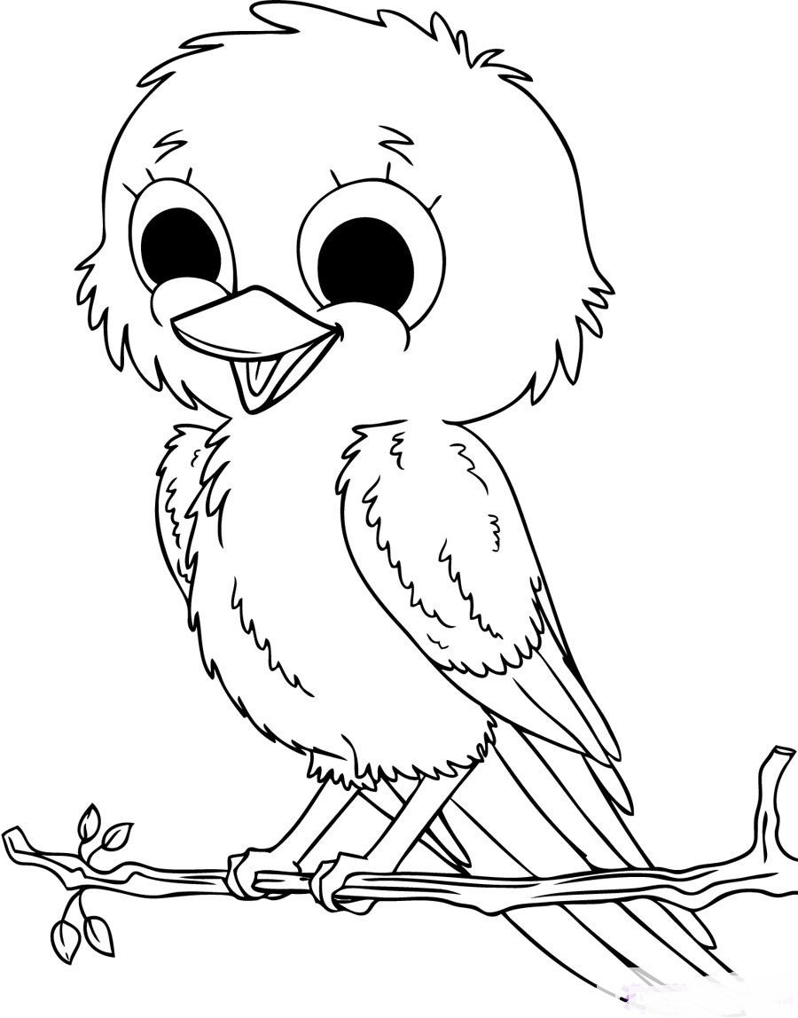 Free Printable Bird Coloring Pages  Cute Baby Birds Coloring Pages To Printables