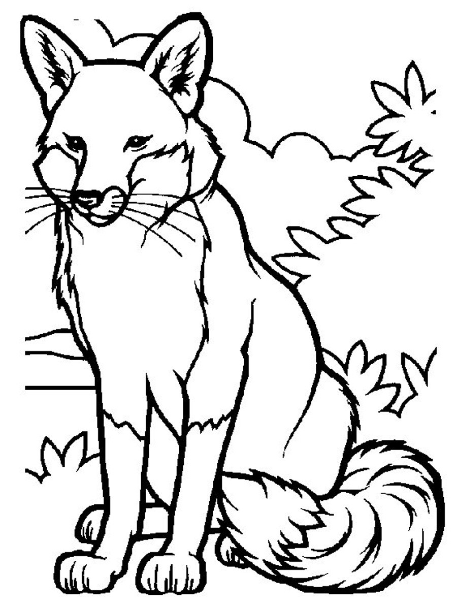 Best ideas about Free Printable Coloring Pages Animals . Save or Pin Free Printable Fox Coloring Pages For Kids Now.