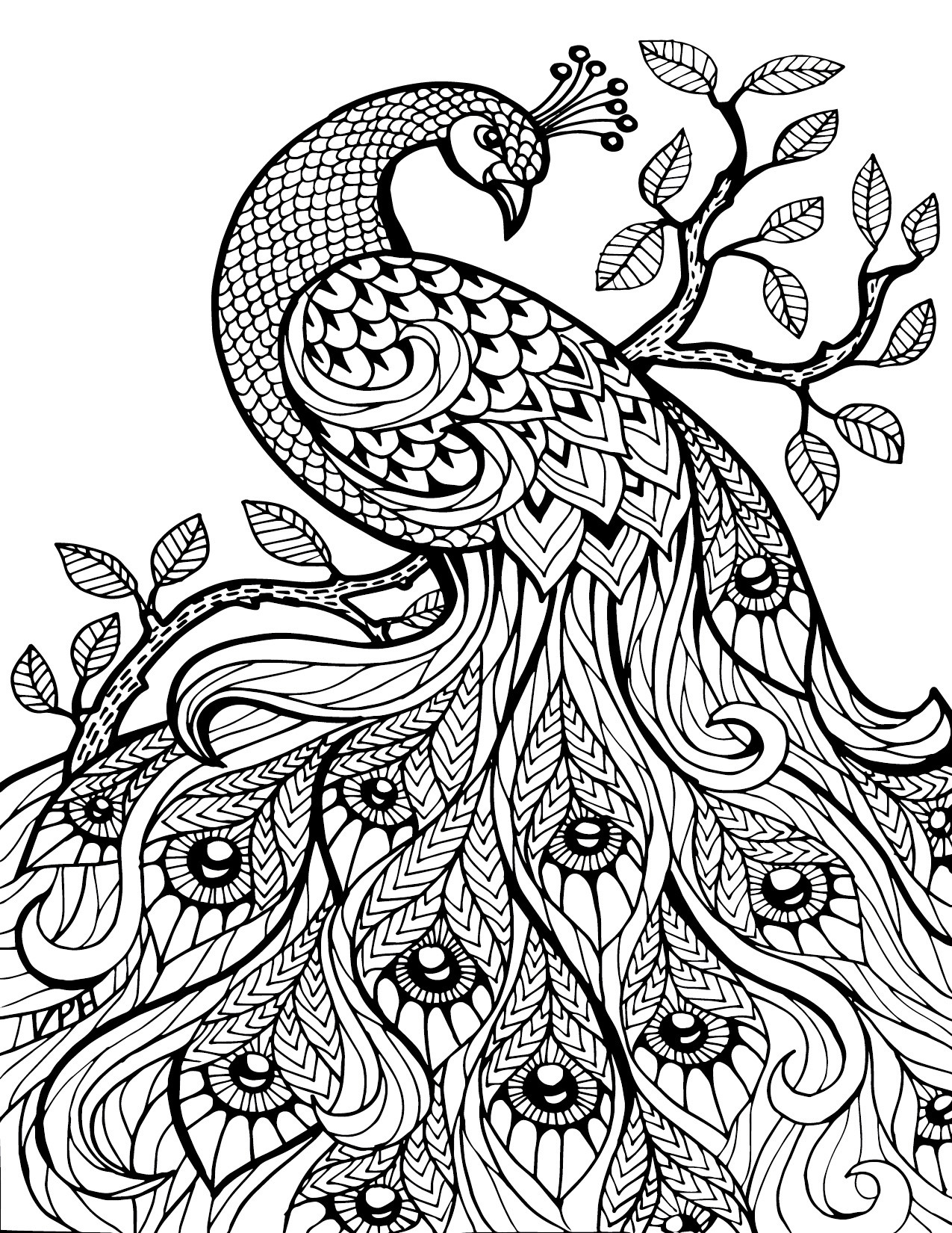 Best ideas about Free Printable Coloring Pages For Adults Only Pdf . Save or Pin Free Download Adult Coloring Pages Now.