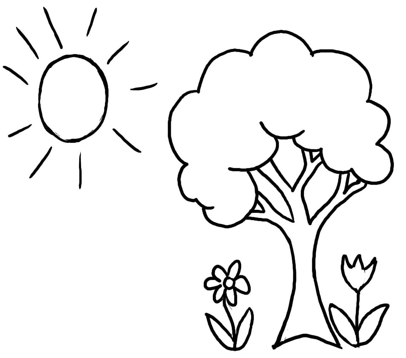 Free Printable Coloring Pages Trees  Tree Coloring Pages