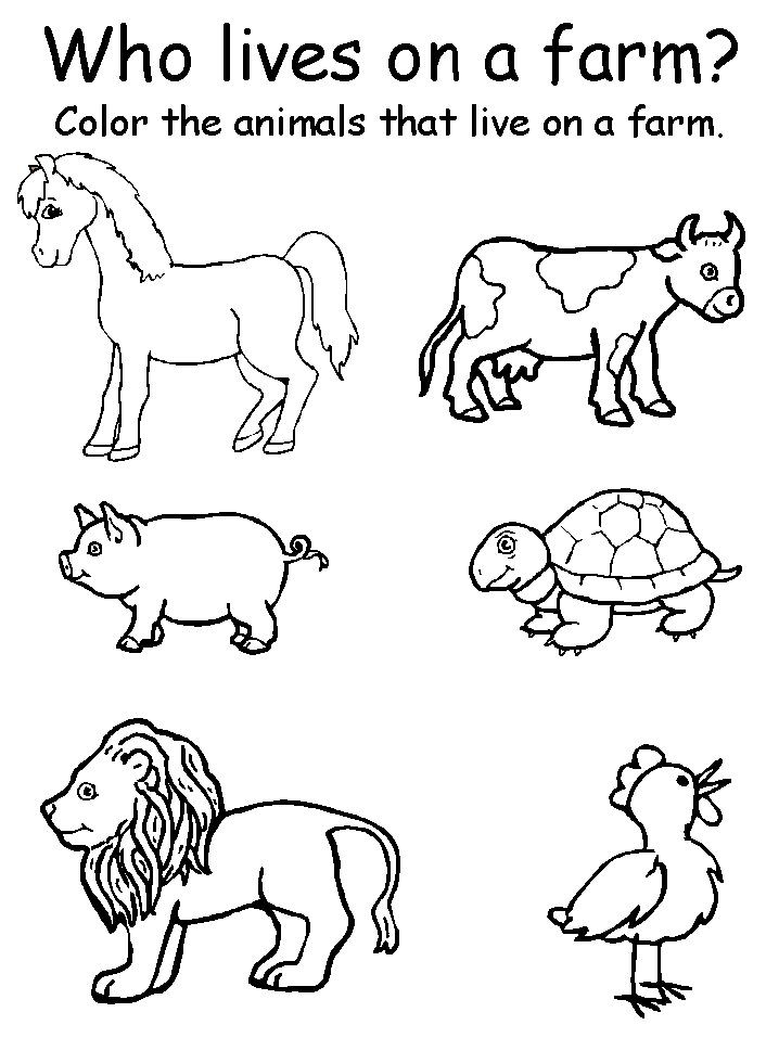 Free Printable Coloring Sheets Of Animals For 5 Grades  Pin by Karen Lyn on classroom organization