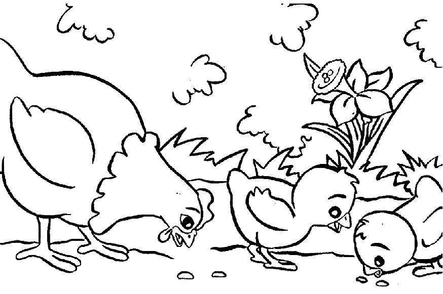 Free Printable Coloring Sheets Of Animals For 5 Grades  Free Printable Farm Animal Coloring Pages For Kids