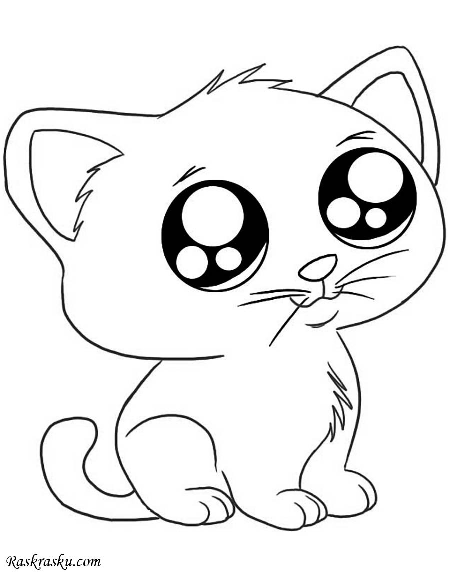 Best ideas about Free Printable Coloring Sheets Of Baby Animals With Big Eyes And Are Kittens . Save or Pin Раскраска Удивлённый кот Now.